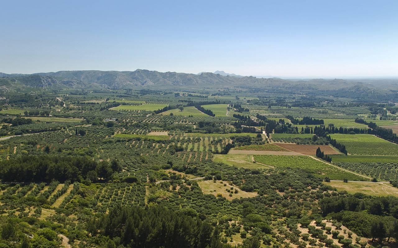 visit provence